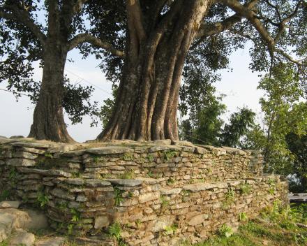 Een Chautaara in Nepal